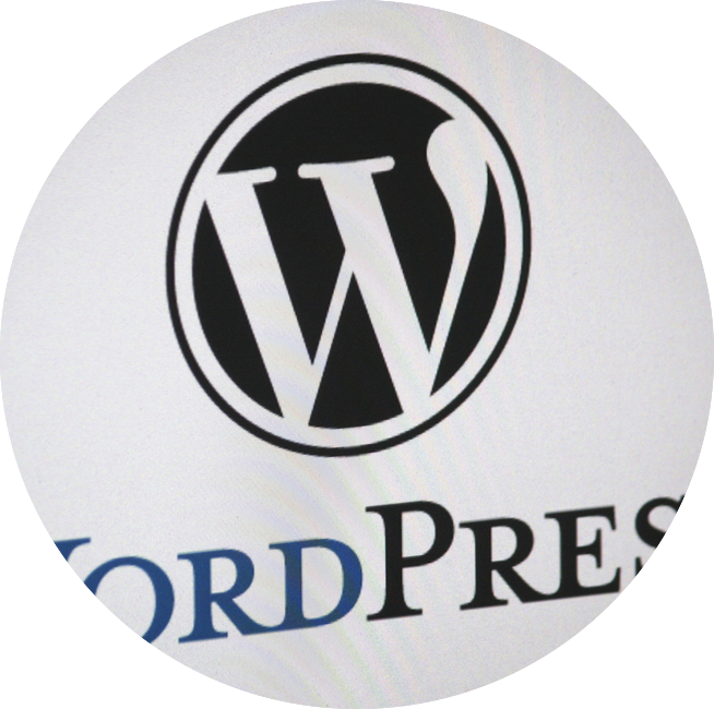 wordpress website setup